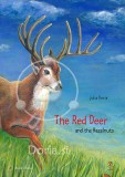 The red deer and the hazelnuts