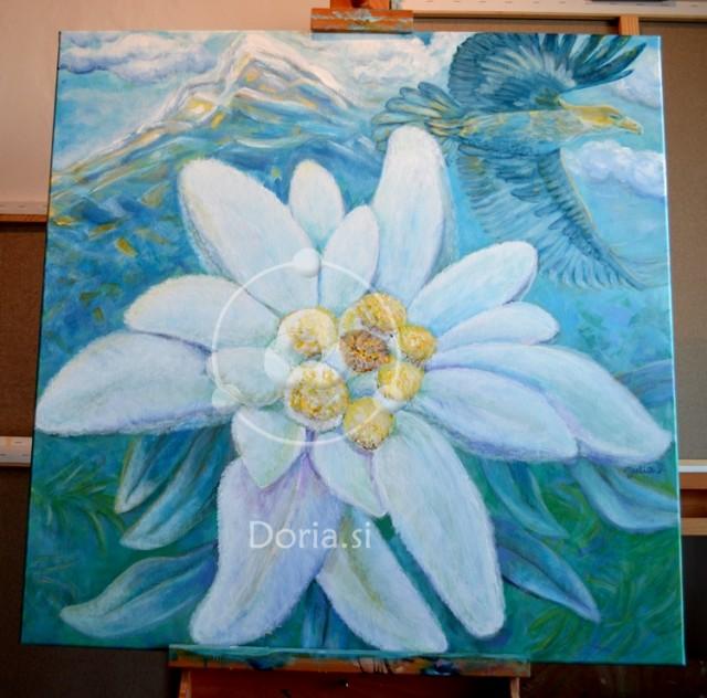 Planika - Edelweiss (slika - painting)